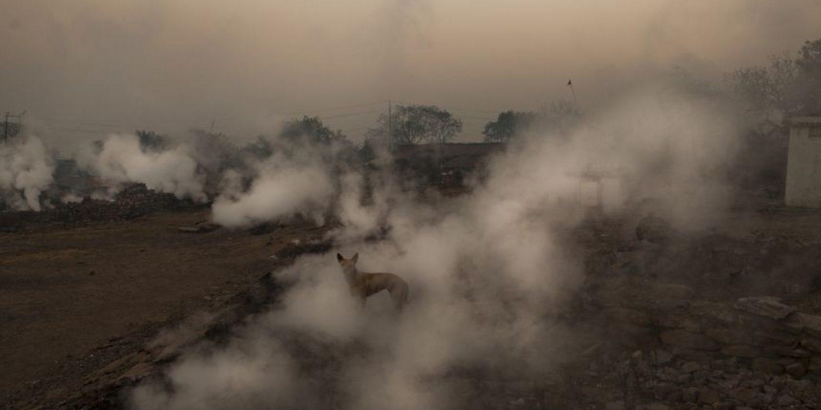 Algunas de estas ciudades son Lucknow, Ahmedabad y Raipur. Foto:Getty Images