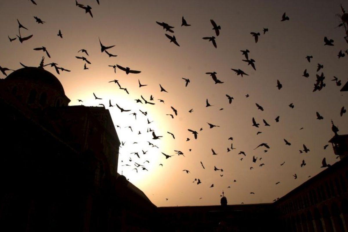 3. La vida en Siria Foto:Getty Images