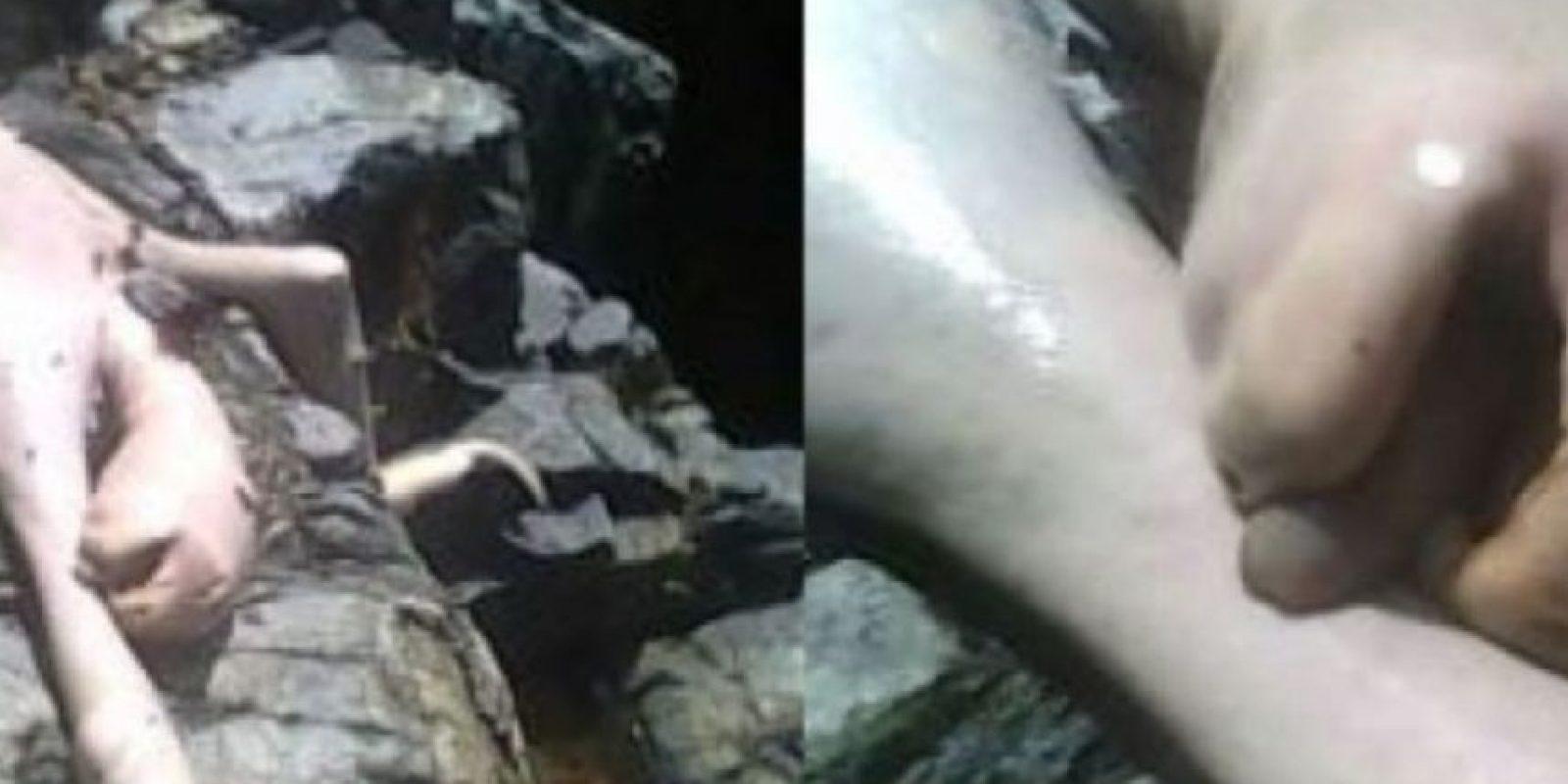 7. En 2009, unos jóvenes se encontraban en un paraje natural, cuando vieron a una extraña criatura escalar y la mataron a pedradas. La criatura no tenía pelo, y pronto los medios comenzaron a llamarla 'Gollum', como el personaje de 'El Señor de los Anillos'. Según el portal 'Crítica en Línea', es la mutación de un animal. Foto:Vía Youtube