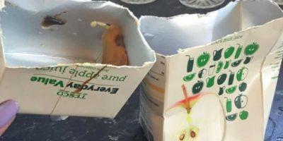 """Luego de probarlo, las cosas empeoraron, pues su sabor era """"completamente horrible"""", mencionó Lorna Fisher en la página del supermercado """"Tesco"""" en Reading, Inglaterra. """"Parecía un alienígena, pensamos que teníamos que matarlo con fuego"""", dijo Lorna. Foto:Facebook/Tesco"""