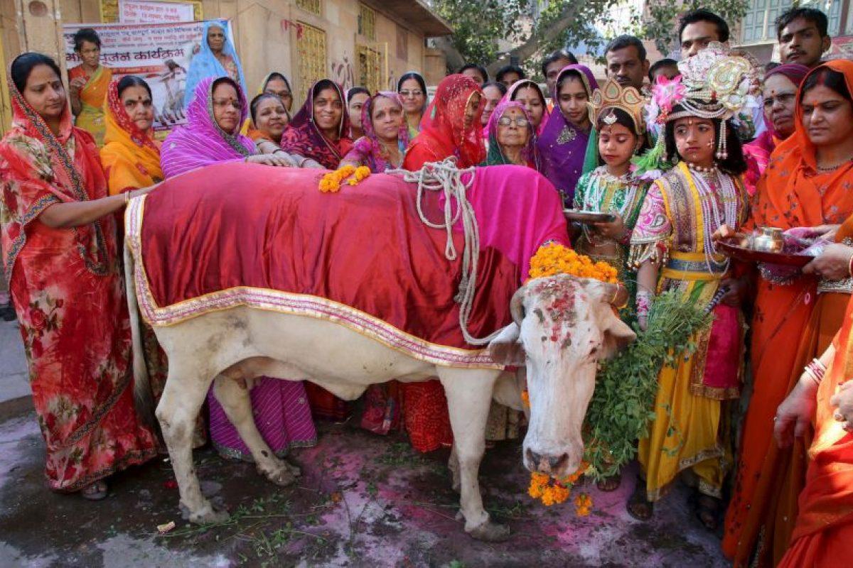 Celebración del Festival de Gopal Ashtami en la India. Foto:AFP