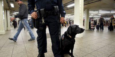 Un Policía de Nueva York con un perro en la estación de tren de Times Square tras las amenazas de ISIS. Foto:AFP