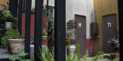 La vecindad siempre tenía plantas y flores. Foto:Nicolás Corte
