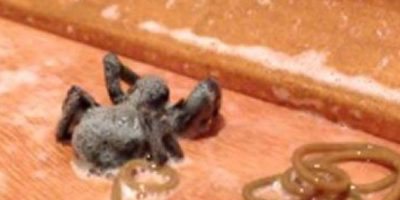 1. Gusano de crin de caballo: se mete en su huésped, por lo general crustáceo o insecto, al este beber agua contaminada. Foto:vía Youtube