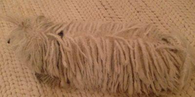 Se confunde con la alfombra. Foto:facebook.com/beast.the.dog