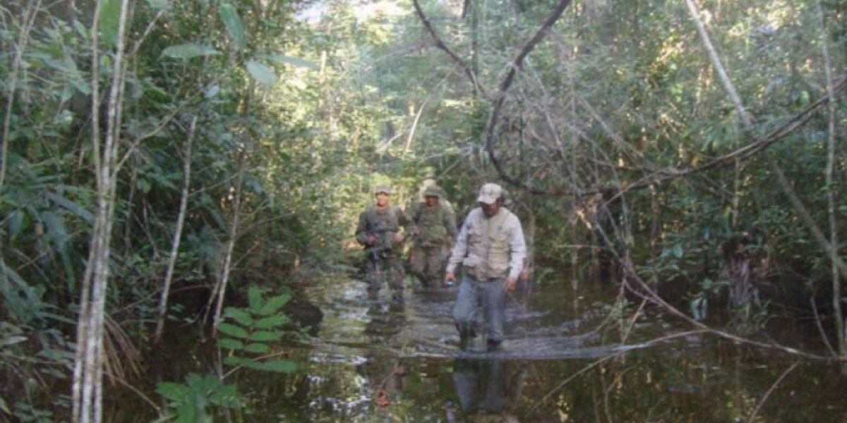 Guatecarbon: el proyecto de la Biosfera Maya que se presentará en la #COP21