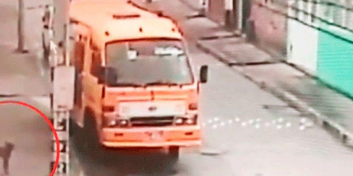 VIDEO.  Bus arranca solo y sin conductor provocando un accidente