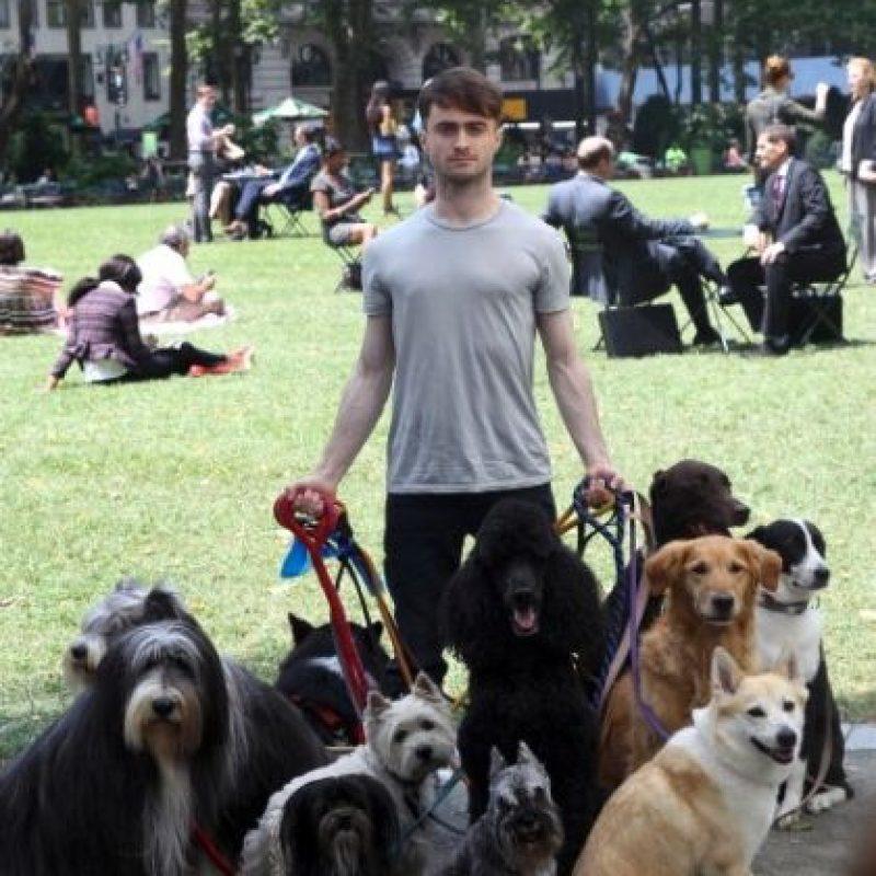 Foto:vía plus.google.com/+DanielRadcliffe