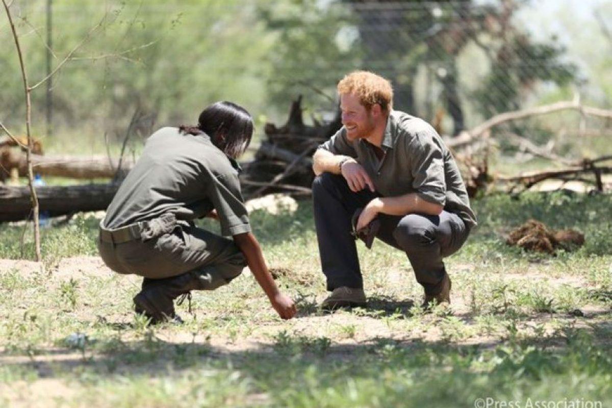 Compartió instrucciones con el personal del Parque Natural Foto:Twitter.com/KensingtonRoyal