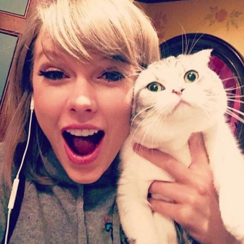 4- Taylor Siwft diciendo que su gata Meregith es alérgica a disfrutar. 2.4 millones de me gusta. Foto:vía instagram.com/taylorswift