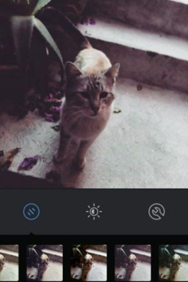 Aden Foto:Instagram