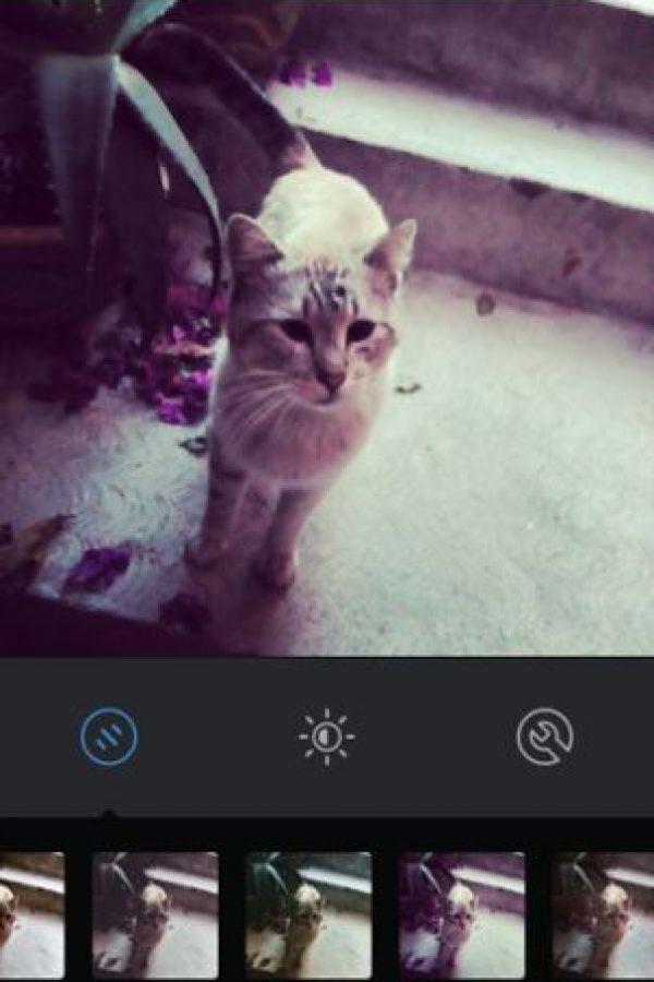 Amaro Foto:Instagram