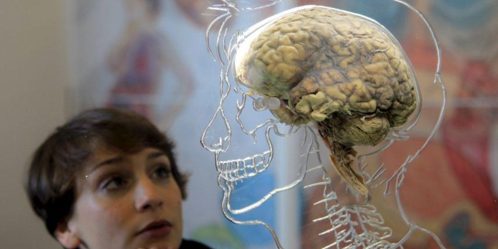 Aunque afecta principalmente a las personas mayores, la demencia no constituye una consecuencia normal del envejecimiento. Foto:Getty Images