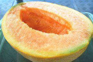 3. Melón Yubari. Otro fruto cultivado en invernaderos de Japón. Foto:Vía Wikipedia.org