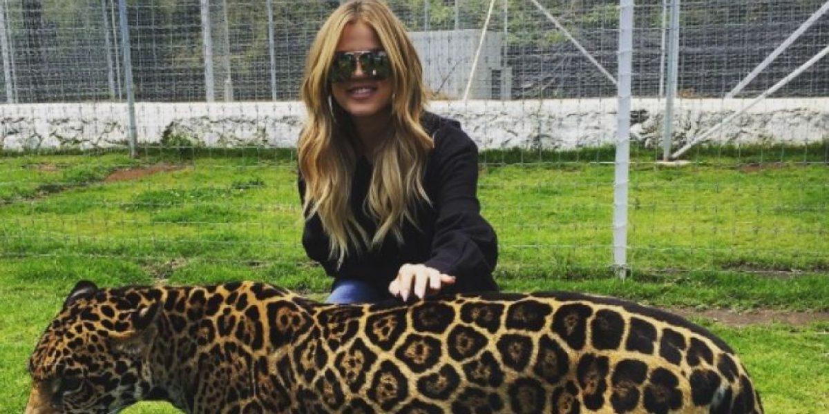 El aterrador momento que Khloe Kardashian pasó en su terapia con leones