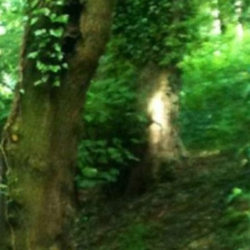 ¿Qué opinan de esta mancha de luz? Foto:Birminghamhistory