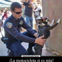 Ladrones en situaciones peculiares Foto:Imgur