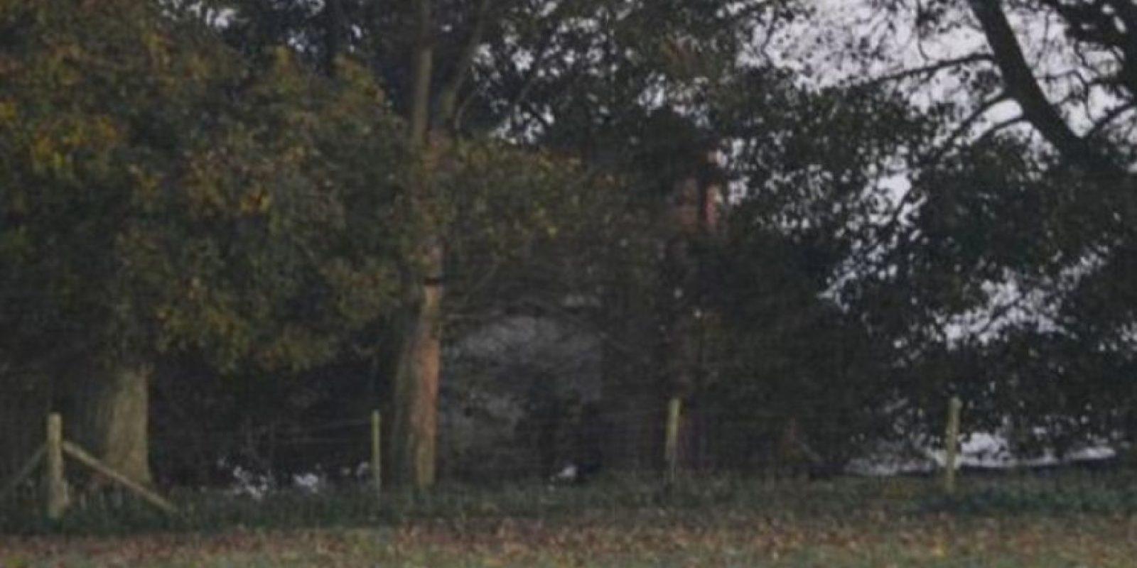 ¿Ya descubrieron lo que hay entre los árboles? Foto:Vía Jimie Brassington/Expressandstar
