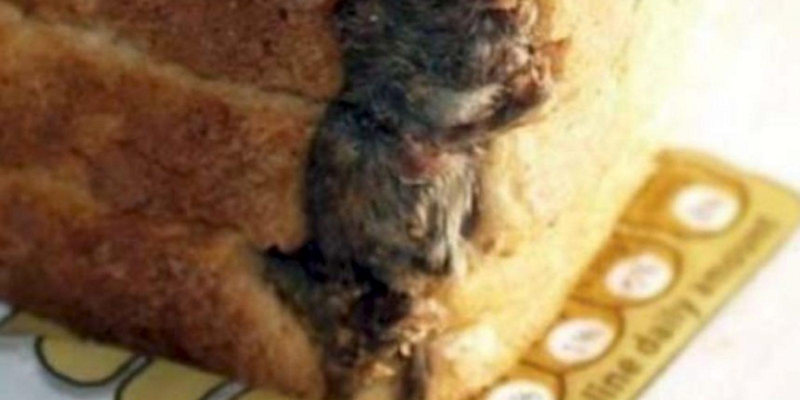 Rata empanizada. Foto:vía EpicFail