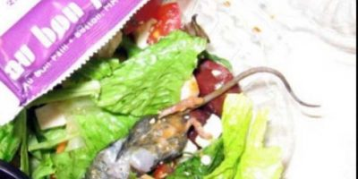 Rata en ensalada. Foto:vía EpicFail