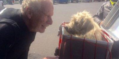 Alcalde Álvaro Arzú realiza acto noble con perro callejero