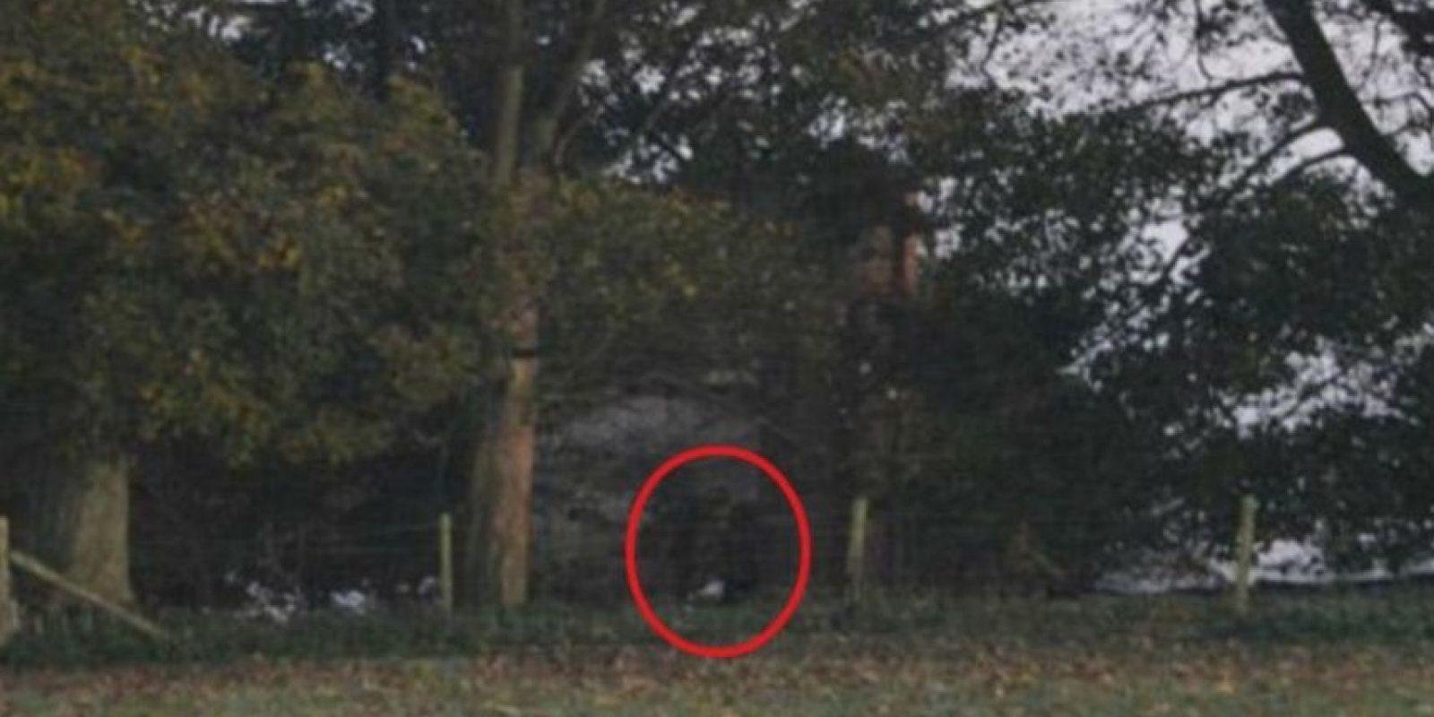 5. La imagen fue tomada por el fotógrafo amateur Jamie Brassington en Staffordshire, Reino Unido, quien visitó la zona para tomar algunas imágenes de la niebla y el campo. Foto:Vía Jimie Brassington/Expressandstar