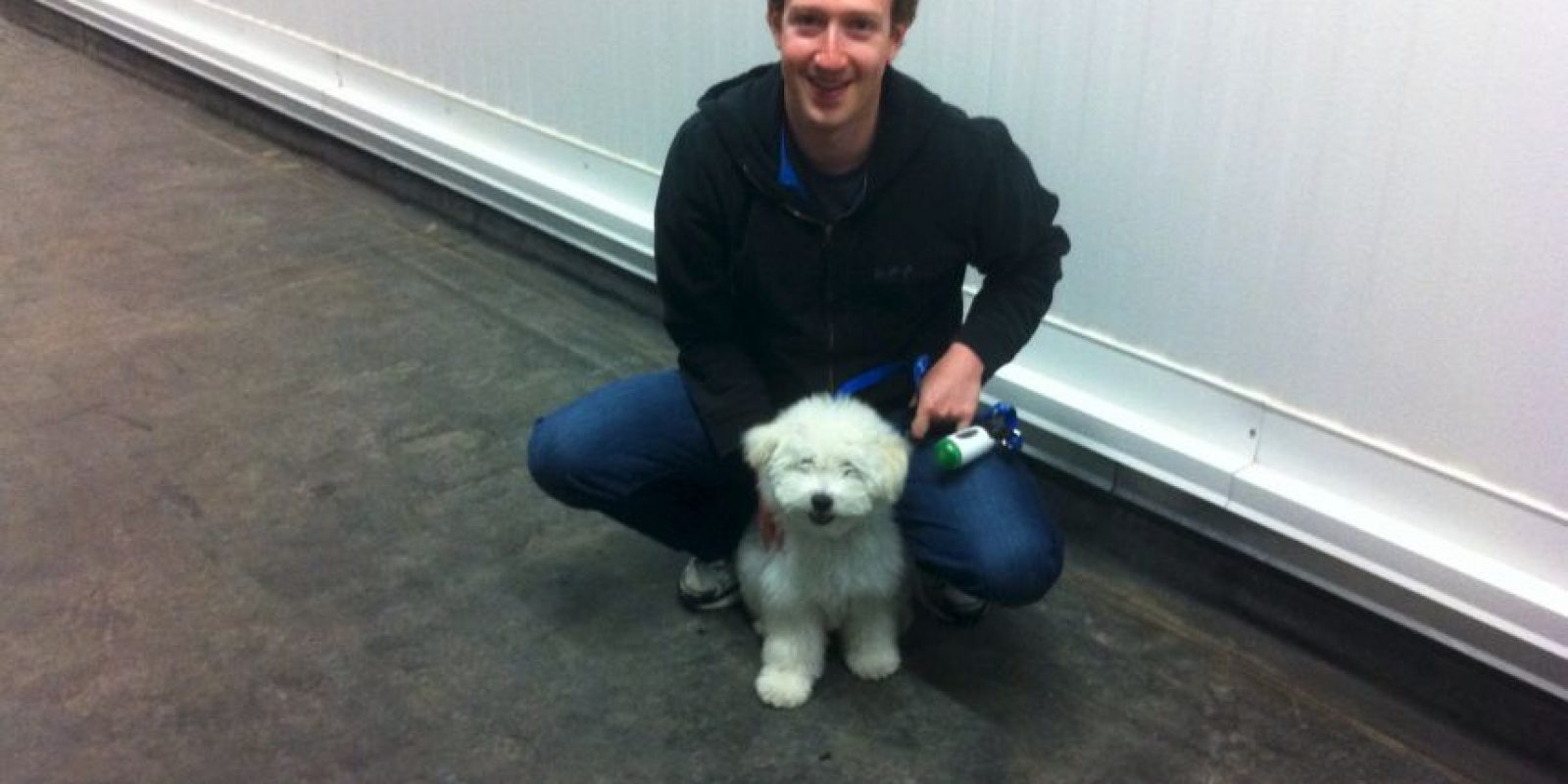 "Estas son las fotos de Facebook que Beast, la mascota de Mark Zuckerberg ""publica"" en Facebook. Foto: facebook.com/beast.the.dog/"