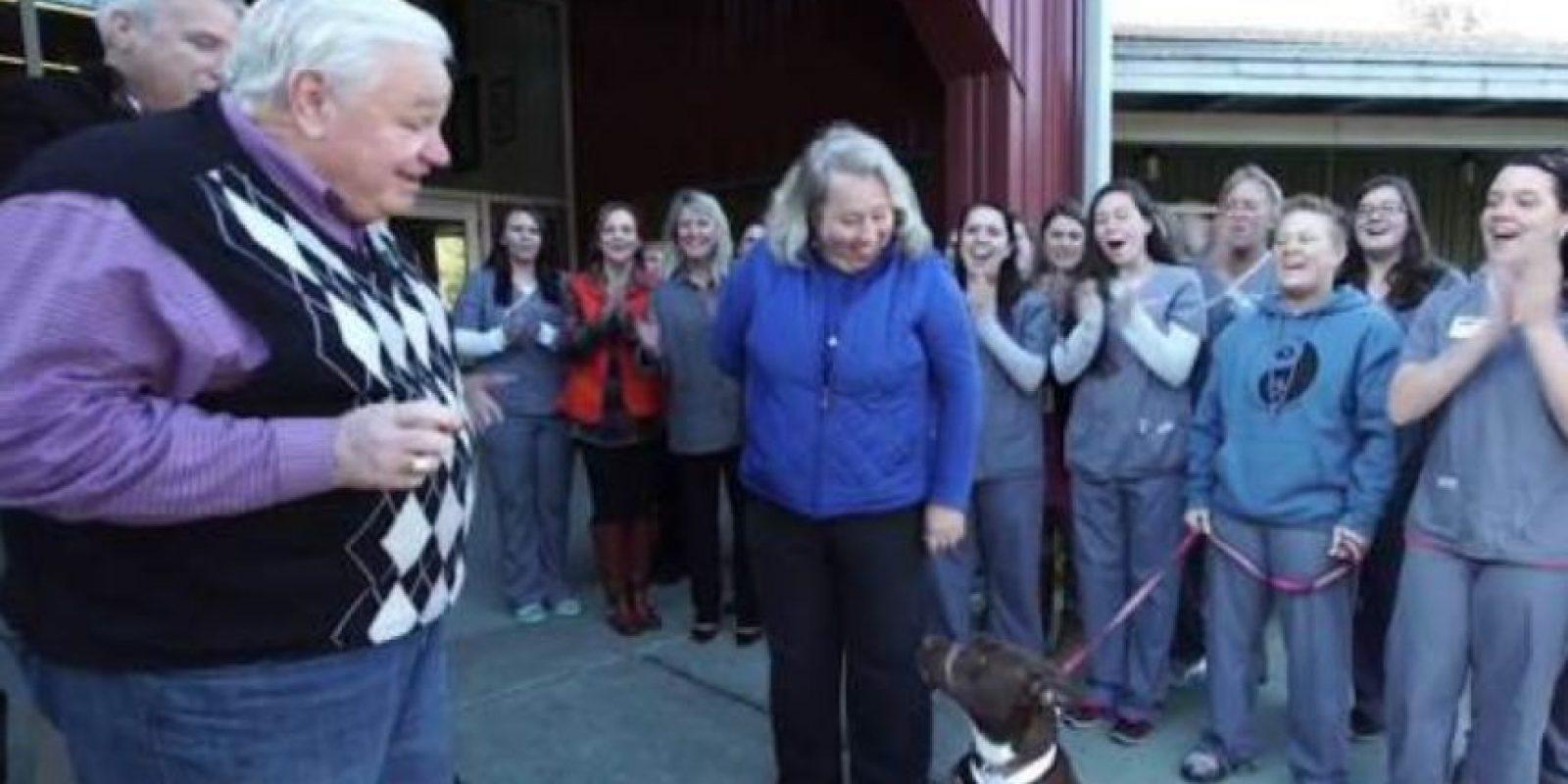 Y es un animal muy querido en Charleston. Foto:vía Youtube/BarkBox