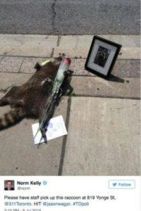 En Toronto, Canadá, un hombre contactó con el Twitter oficial de su ciudad para denunciarlo y el resultado no fue lo que esperaba. Foto:Vía Twitter.com/KrisReports