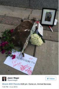 """Sin embargo, esto no sucedió """"inmediatamente"""", por lo que causó indignación en redes sociales. Foto:Vía Twitter.com/KrisReports"""