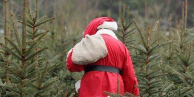 Lamentablemente, esto ocurrió a cuatro días de que se festejara Navidad. Foto:Getty Images
