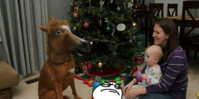 Él quería un pony para Navidad Foto:Know Your Meme