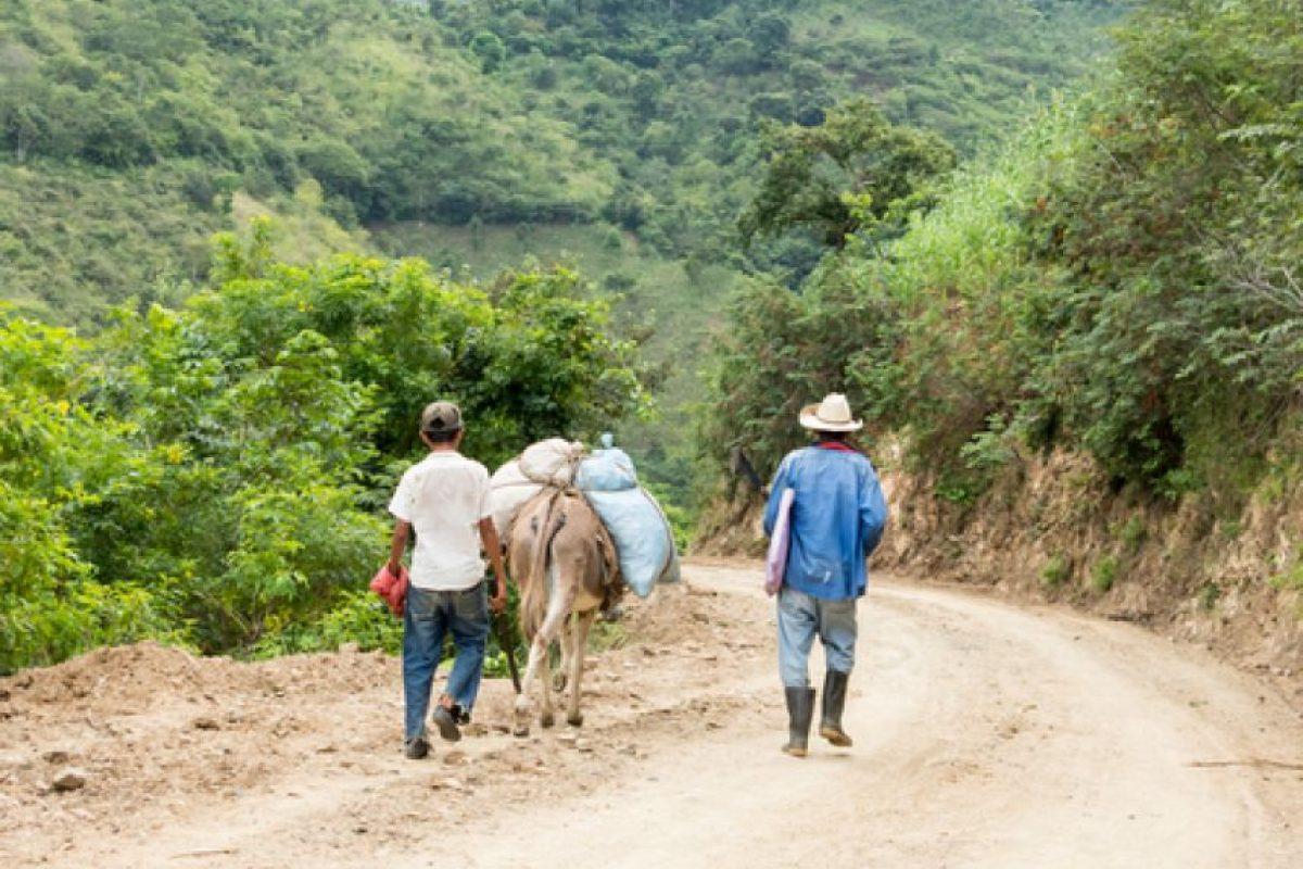 Foto:Imagen de referencia. Agencias