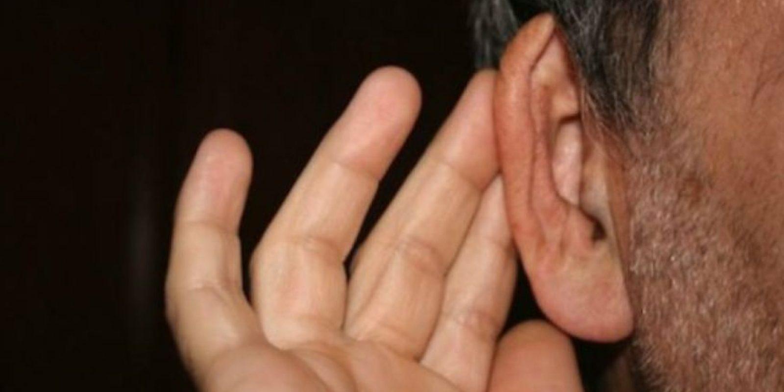 Mover las orejas Foto:Vía que.es