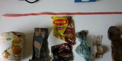 Expertos localizarón recipientes de yogurt, sandalias, envolturas de comida y otros desechos plásticos dentro de su estómago Foto:Vía facebook.com/OrcaPlett