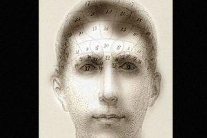 Estos experimentos sugieren que nuestro cerebro prioriza diversos detalles dentro de una imagen o una escena. Foto:mit.edu – Aude Oliva
