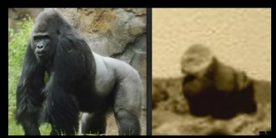Aficionados aseguran que encontraron a un gorila en el suelo marciano Foto:NASA