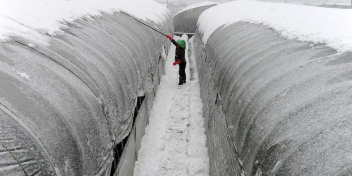 Impresionantes imágenes de la peor ola de frío en 30 años de China