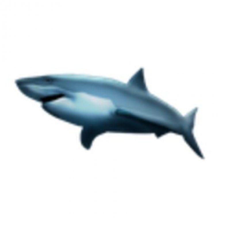 Tiburón. Foto:vía emojipedia.org