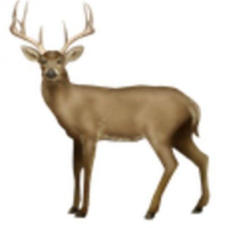 Ciervo. Foto:vía emojipedia.org