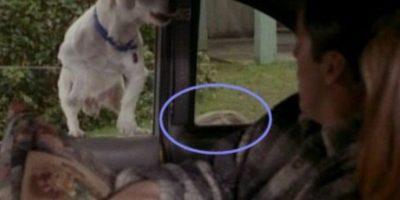 ¿Habían notado que el entrenador del perro se asoma en la ventana? Foto:Vía YouTube / Warner Bros