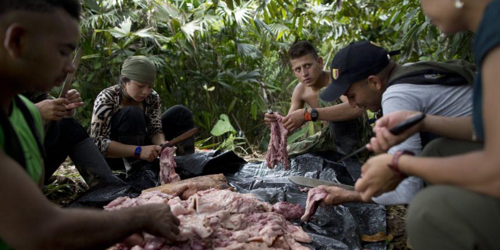 En esta imagen, tomada el 4 de enero de 2016, combatientes rebeldes del frente 36 de las Fuerzas Armadas Revolucionarias de Colombia, o FARC, retiran la piel de un cerdo muerto, en su campamento clandestino en el estado de Antioquia, en los Alpes colombianos. El temor por el futuro es común entre los aproximadamente 7.000 combatientes que aún conserva las FARC, muchos de quienes ingresaron a las filas de la insurgencia cuando apenas eran adolescentes huyendo de la pobreza y la exclusión en sus comunidades. Foto:AP/ Rodrigo Abd
