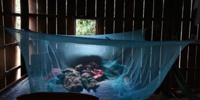 6. El virus se descubrió en los bosques de Zika, Uganda en 1947. Foto:Getty Images