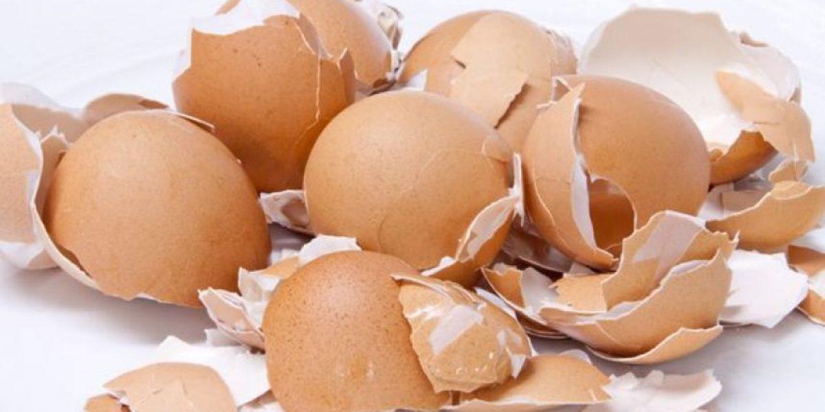 Los 6 beneficios de la cáscara de huevo