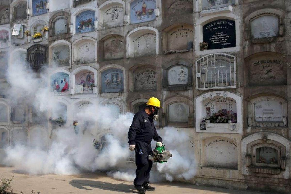 Los organismos que investigan los brotes del virus han encontrado pruebas cada vez más numerosas de una relación entre el Zika y la microcefalia. Foto:AP