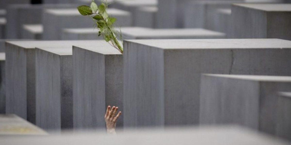 27 de enero, Día Internacional de Conmemoración de las víctimas del Holocausto