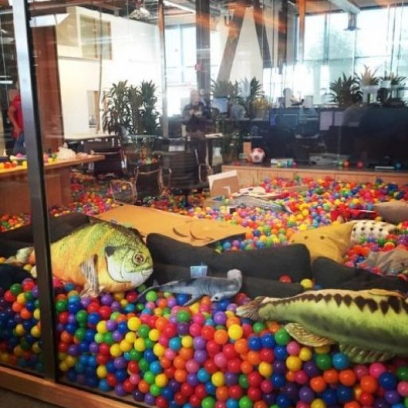 Peces y tiburones con pelotas de colores por doquier en la oficina del CEO de Facebook. Foto:Vía instagram.com/bobspace