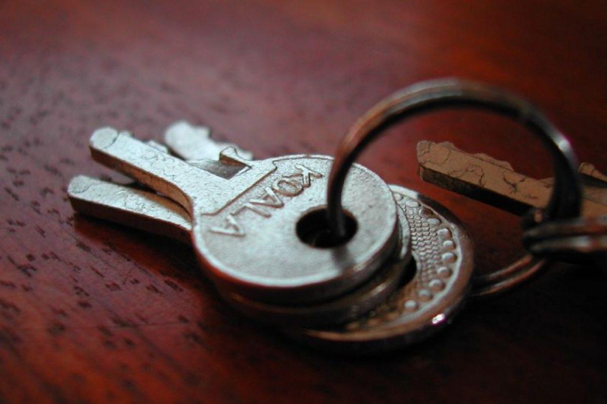 Asígnenles un lugar cerca de la puerta de casa y déjenlas siempre en el mismo lugar. Pronto las tomarán de manera automática. Foto:Vía Flickr