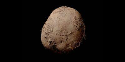 """Su fotografía """"Potato #345"""" fue tomada en 2015, pero hasta 2016 la vendió a un empresario no identificado. Foto:Pinterest"""