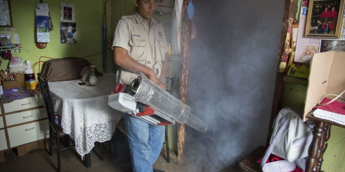Autoridades realizan primeras fumigaciones contra el virus del zika en la zona 7